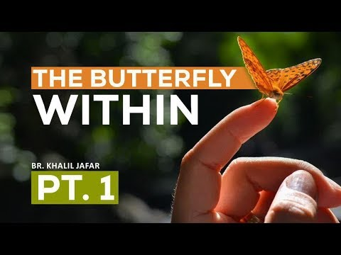 Are we Aliens in this world?   The Butterfly Within Pt. 1   Br. Khalil Jafar   English