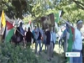 [25 July 2014] Demonstrators in Washington voice their support for Gaza - English